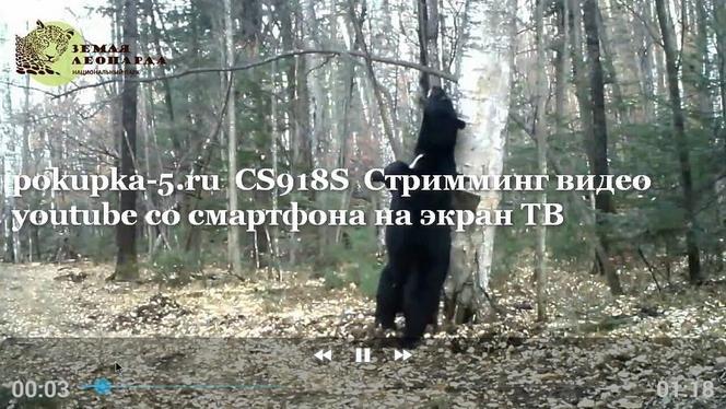 Приложения для дроид на российском языке ленфильм